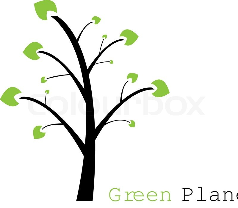 800x697 Tree With Trunk And Leaves Separate Stock Vector Colourbox