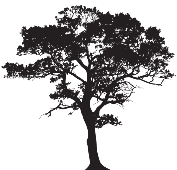 600x575 Collection Of Free Black Vector Tree Trunk. Download On Ubisafe