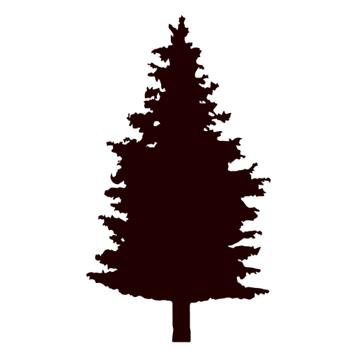 512x512 Fir Tree Vector