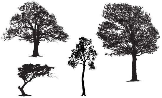 550x333 Free Free Realistic Tree Vector Silhouette Samples Psd Files