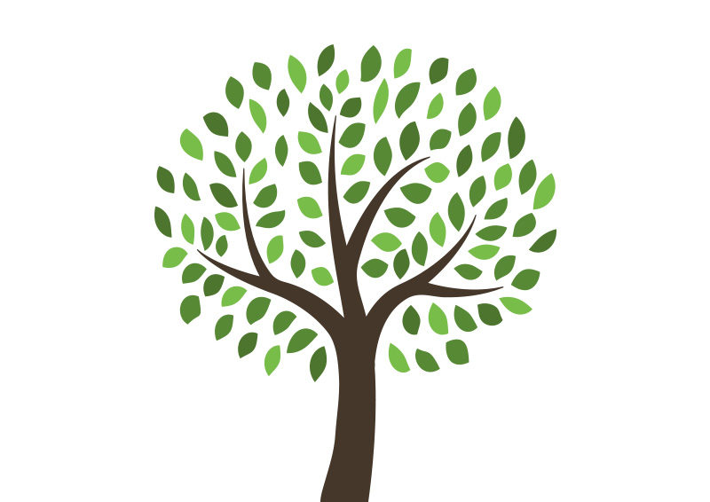 800x566 Free Vector Tree Illustration