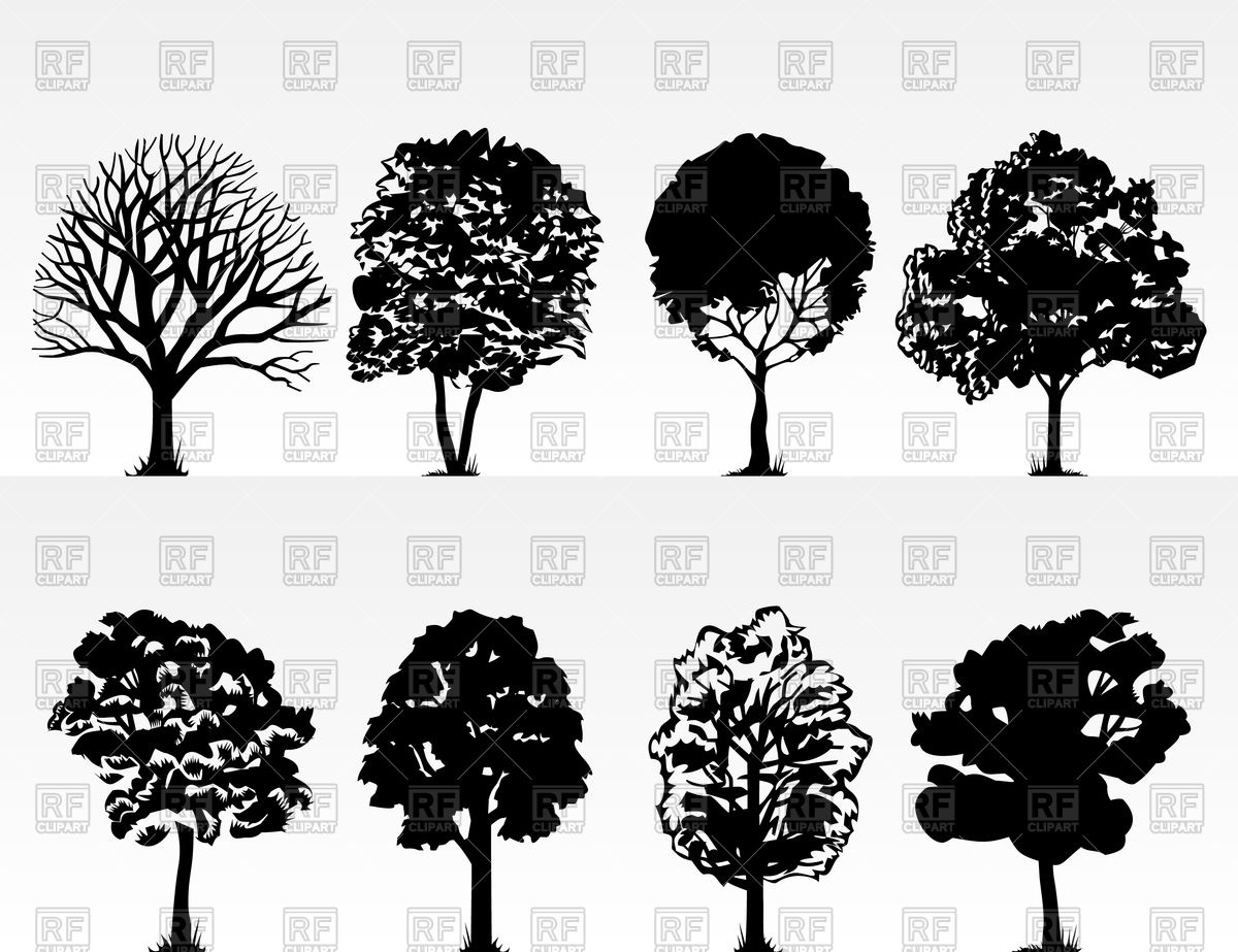 1200x923 Silhouettes Of Trees Vector Image Vector Artwork Of Plants And