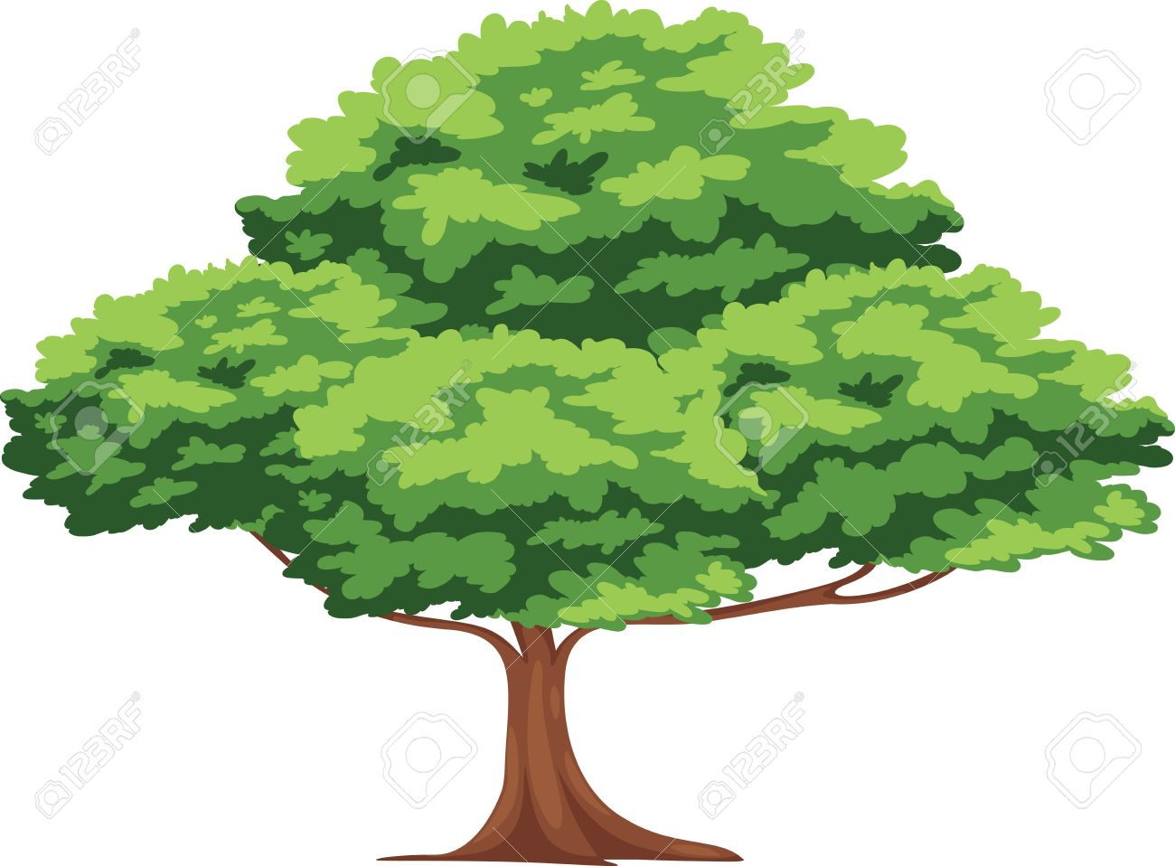 1300x958 Tree Png Vector Transparent Tree Vector.png Images. Pluspng