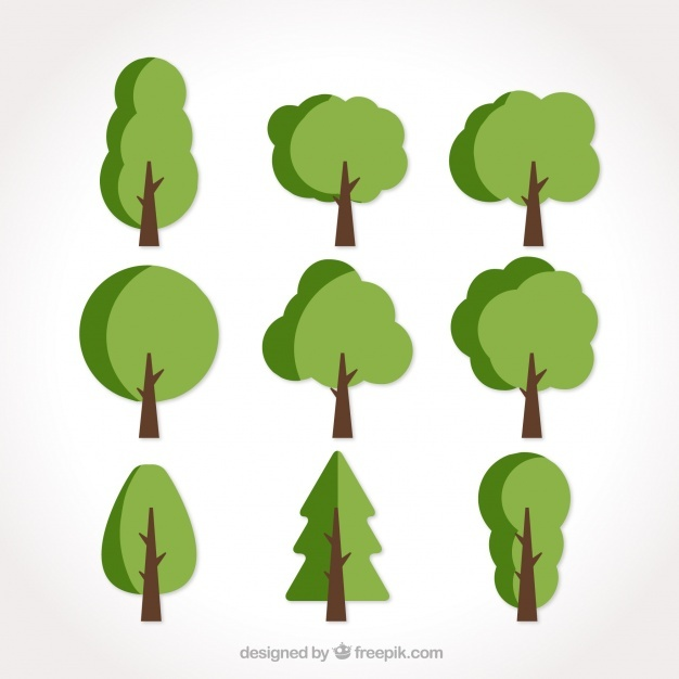 626x626 Tree Vector Image