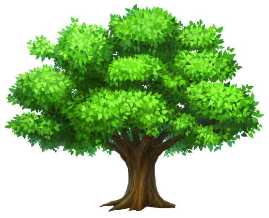 555x450 Collection Of Free Vector Trees High Resolution. Download On Ubisafe