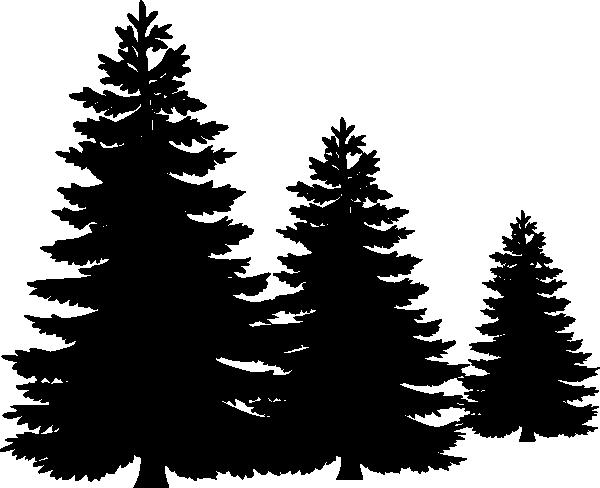 600x488 Line Clipart Tree