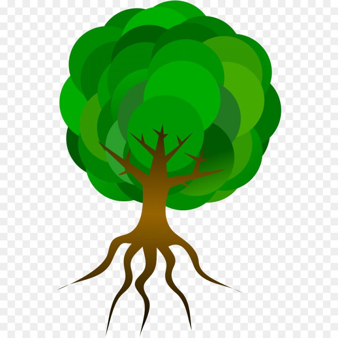 1080x1080 Png Tree Root Clip Art Free Tree Vector Art Shopatcloth
