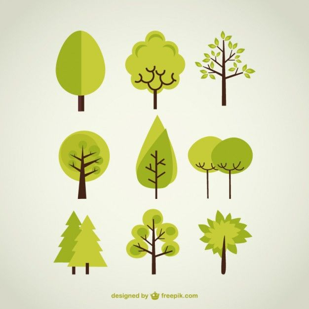 626x626 Tree Vectors, Photos And Psd Files Free Download Background