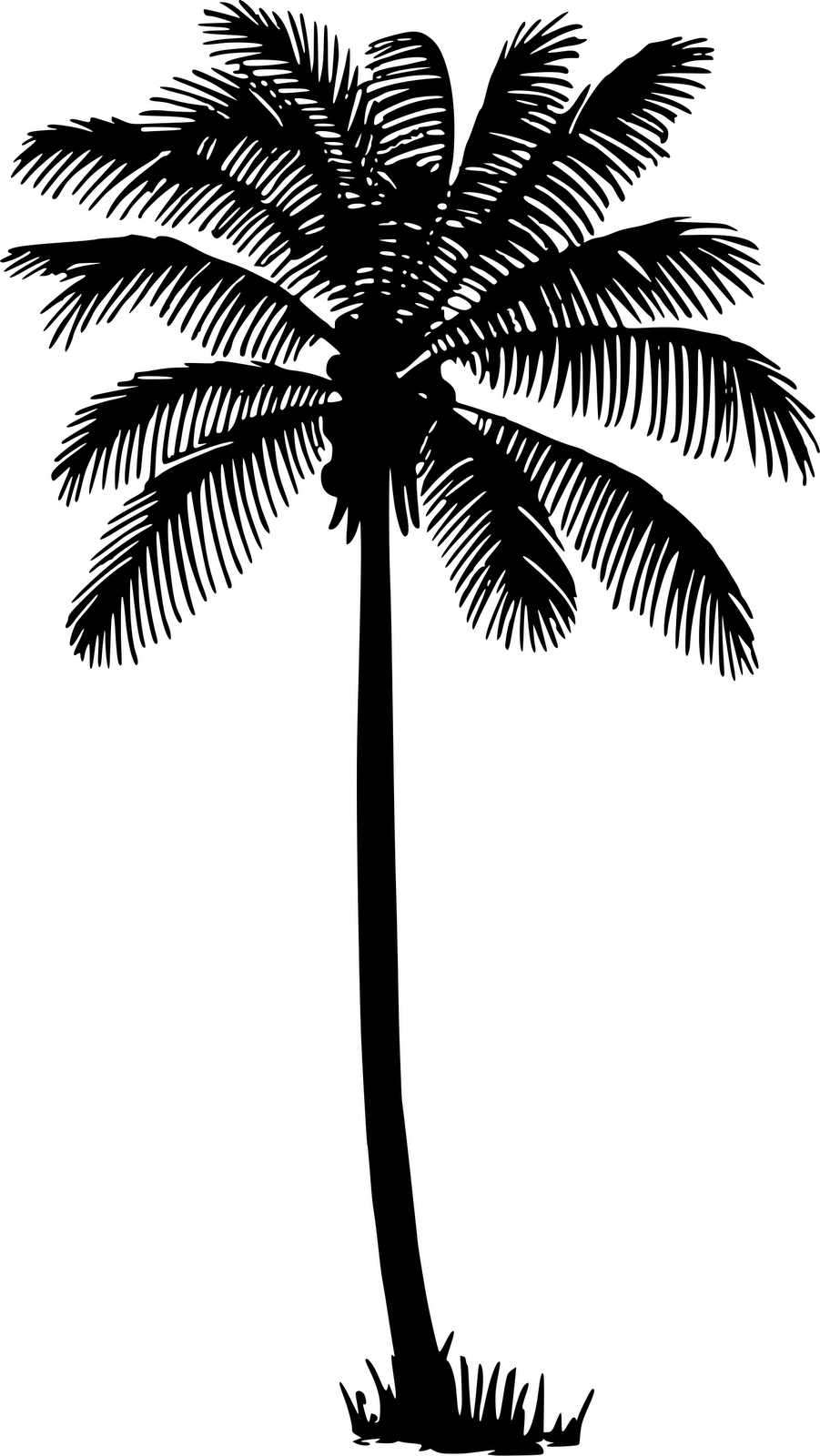 901x1600 Just Arrived Palm Tree Outlines Three Trees Silhouette Download