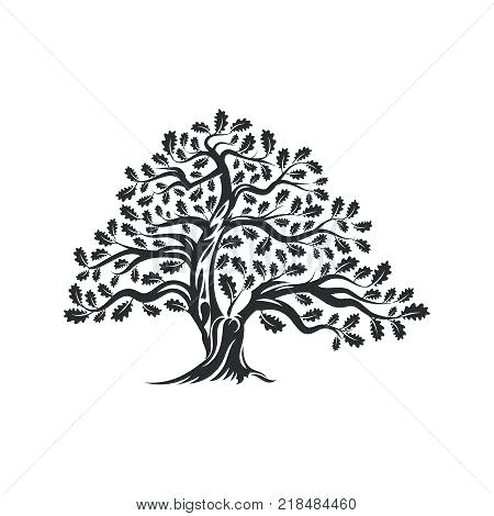 450x470 Oak Tree Vector Illustration Green Symbol Stock Icon Crazywind