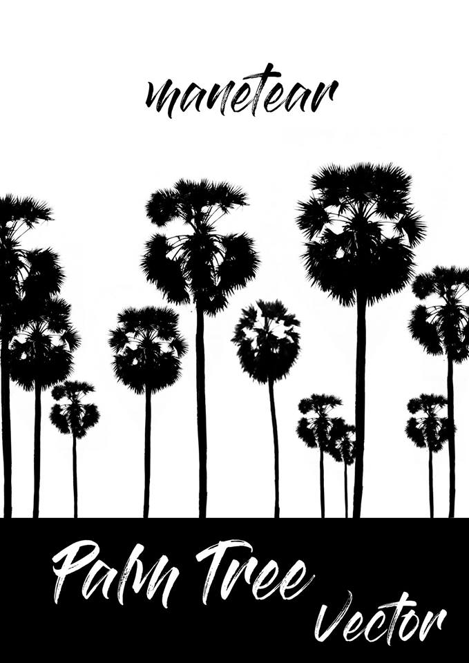 679x960 Palm Tree Khmer Palm Tree Vector Free Psd File ~ Vectorkh