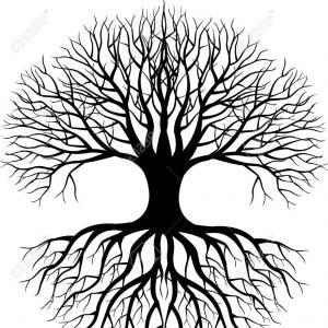 300x300 Png Tree Root Clip Art Free Tree Vector Art Shopatcloth