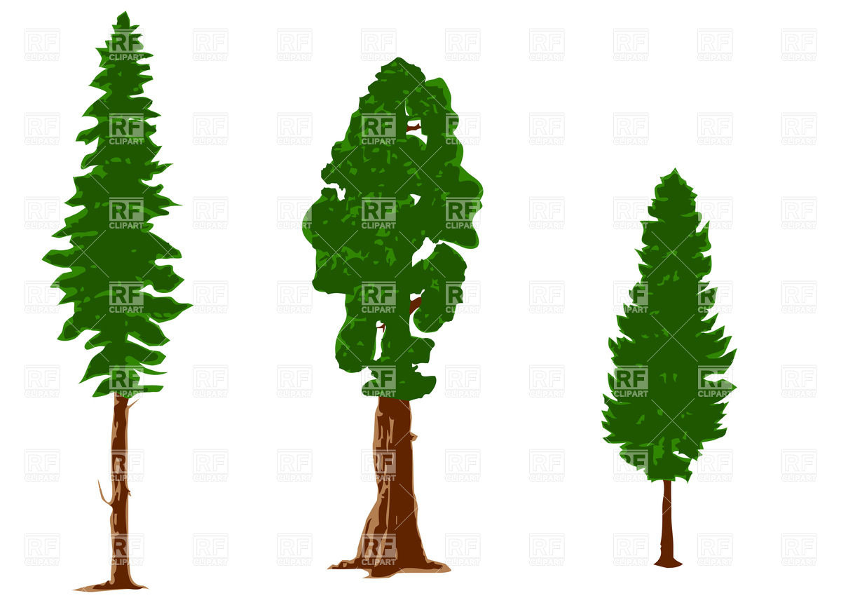 1200x853 Silhouettes Of Pine Trees Vector Image Vector Artwork Of Plants