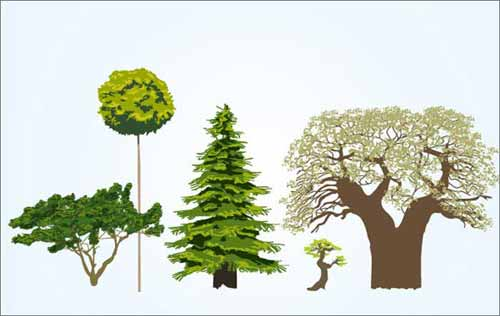 500x316 Tree Vector Free Editable Illustrations To Download