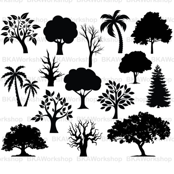 570x570 Tree Svg Tree Vector Tree Clipart Tree Bundle Tree Etsy