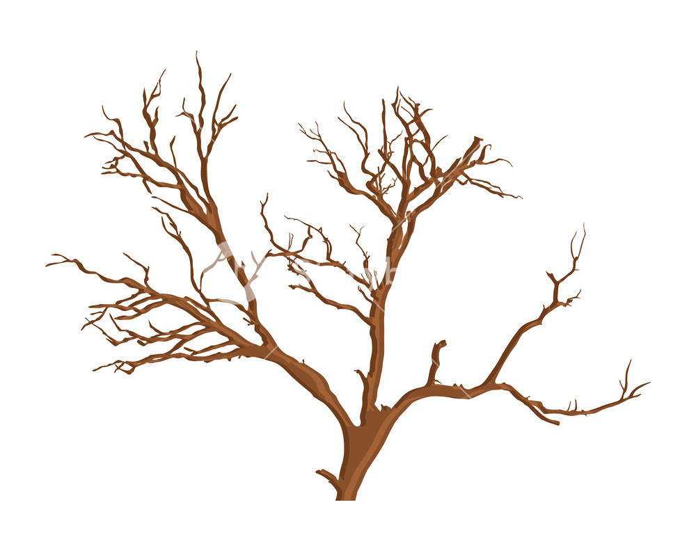 1000x792 Spooky Dead Tree Vector Royalty Free Stock Image