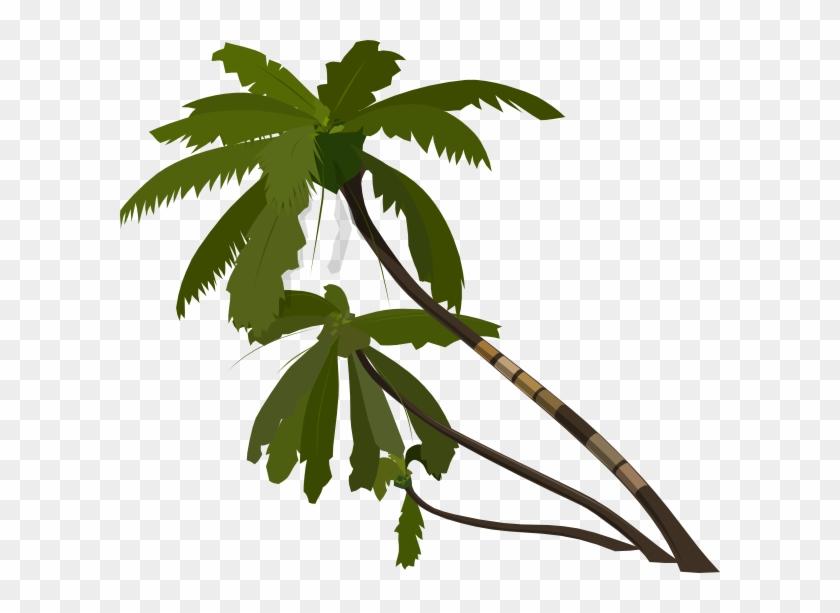 840x613 Jungle Tree Vector Png