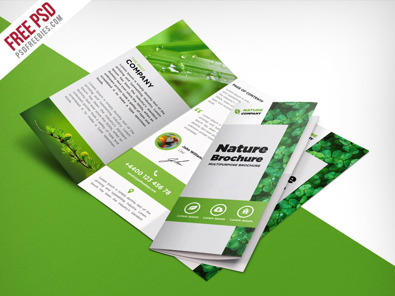 Tri Fold Brochure Vector at GetDrawings com | Free for personal use