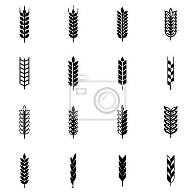 400x400 Conjunto De Icono Negro De De Trigo Vector. Wheat Ear Icon