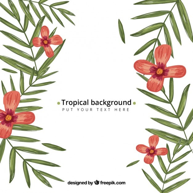 626x626 Ai] Hand Drawn Tropical Background Vector Free Download