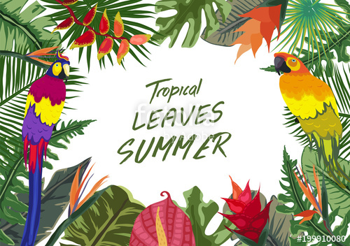 500x352 Summer Tropical Background With Flowers. Background With Tropical