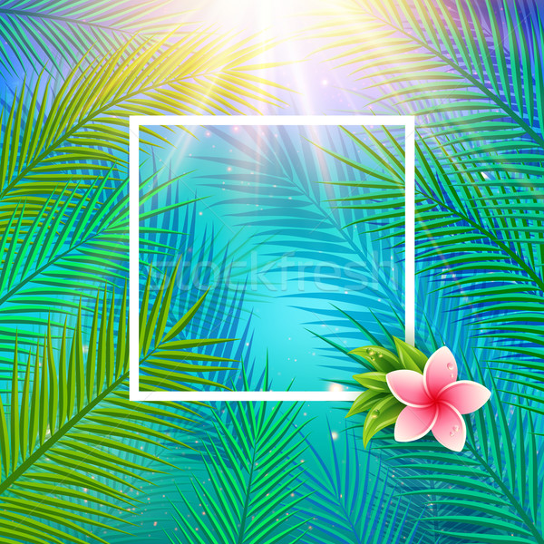 600x600 Tropical Background With Palm Leaves. Vector Illustration