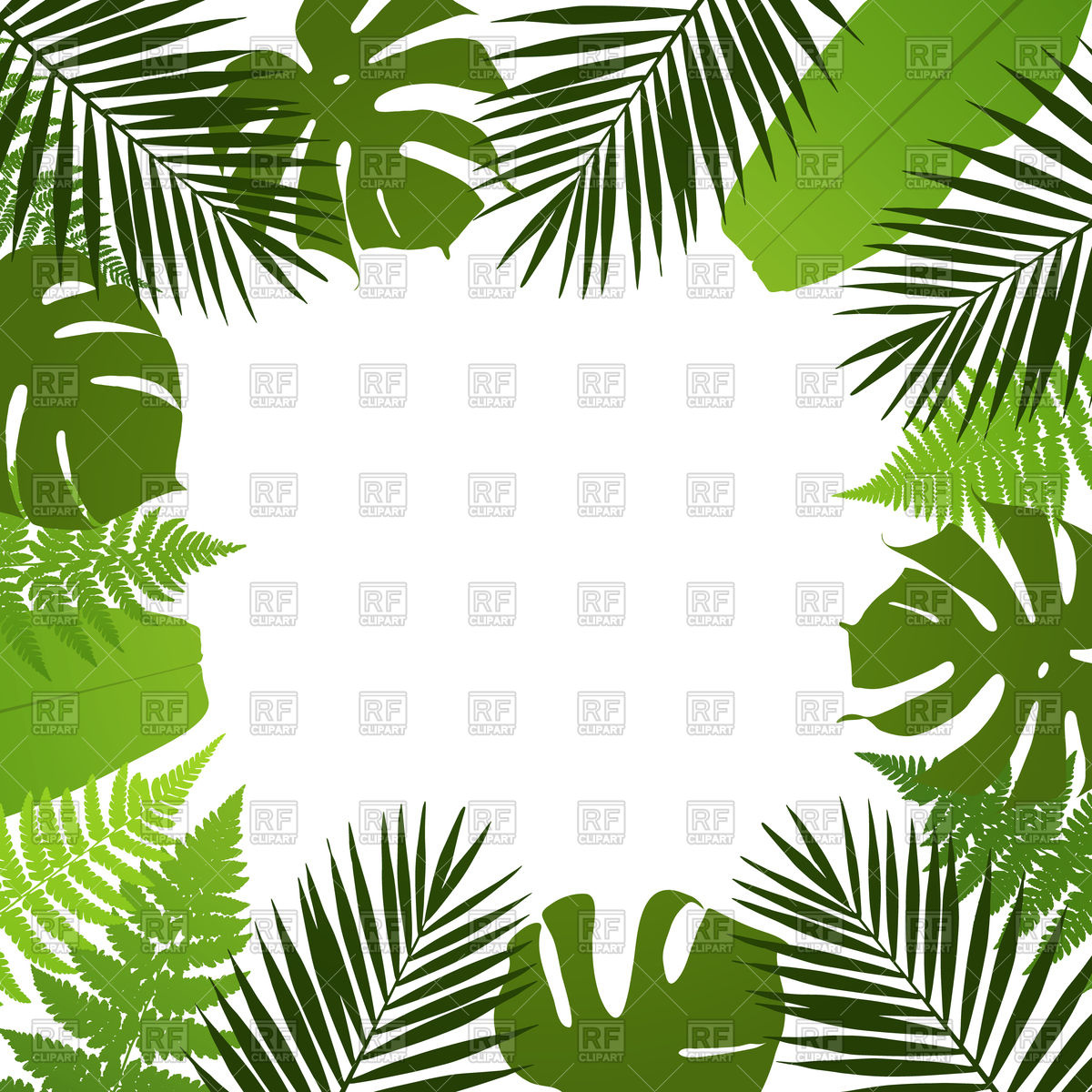 1200x1200 Tropical Leaves Frame Background Vector Image Vector Artwork Of