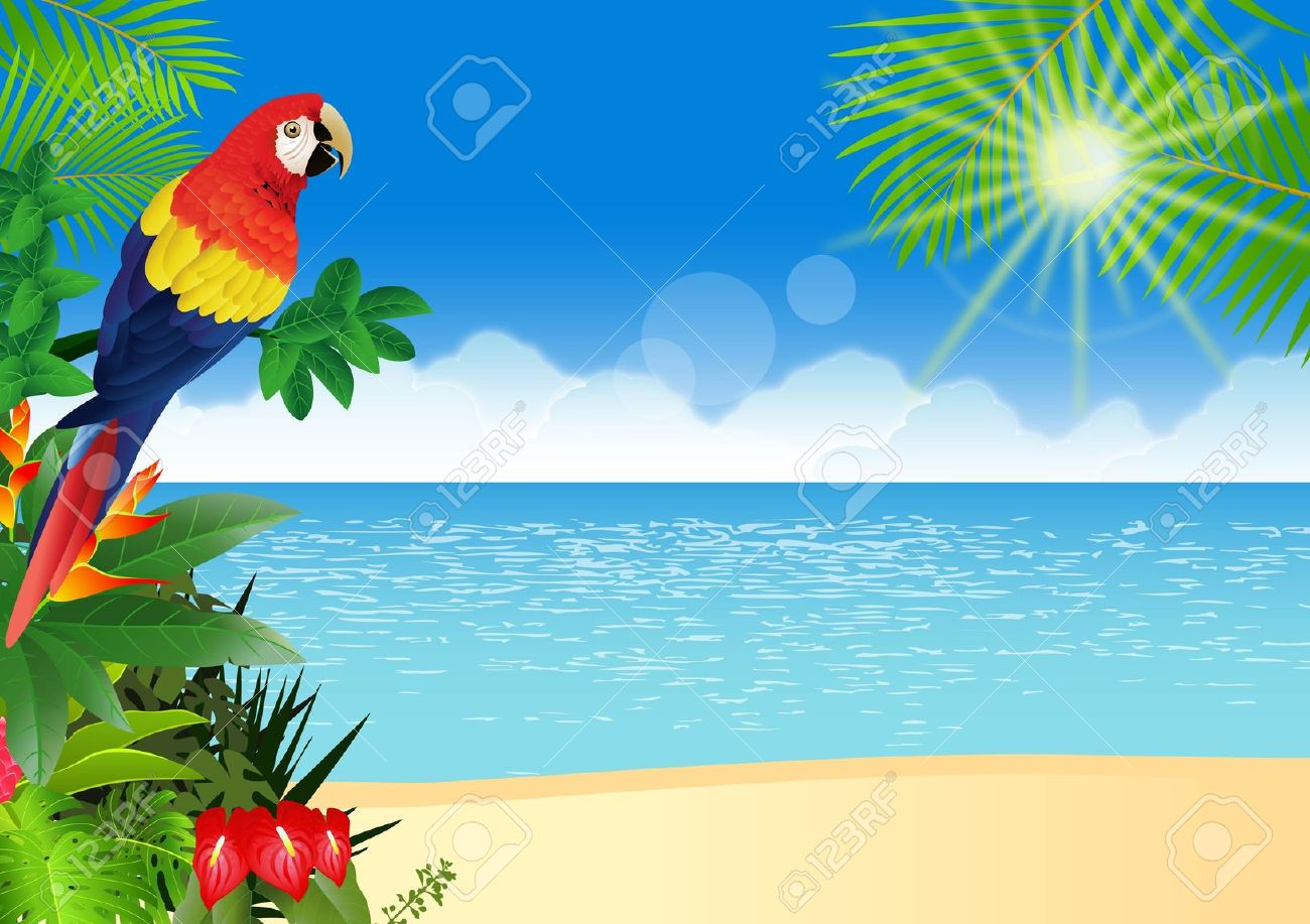 1300x917 Tropics Clipart Tropical Background
