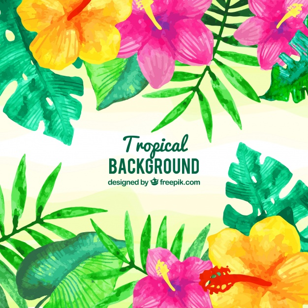 626x626 Watercolor Tropical Leaves Background Vector Free Download