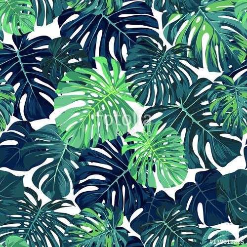 500x500 Green Vector Pattern With Monstera Palm Leaves On Dark Background