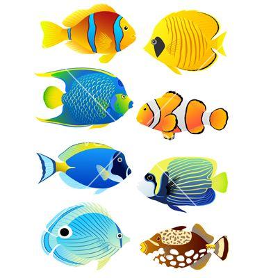 380x400 Set Of Tropical Fish Vector 813328