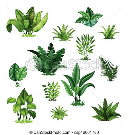 450x470 Set With Different Tropical Plants.