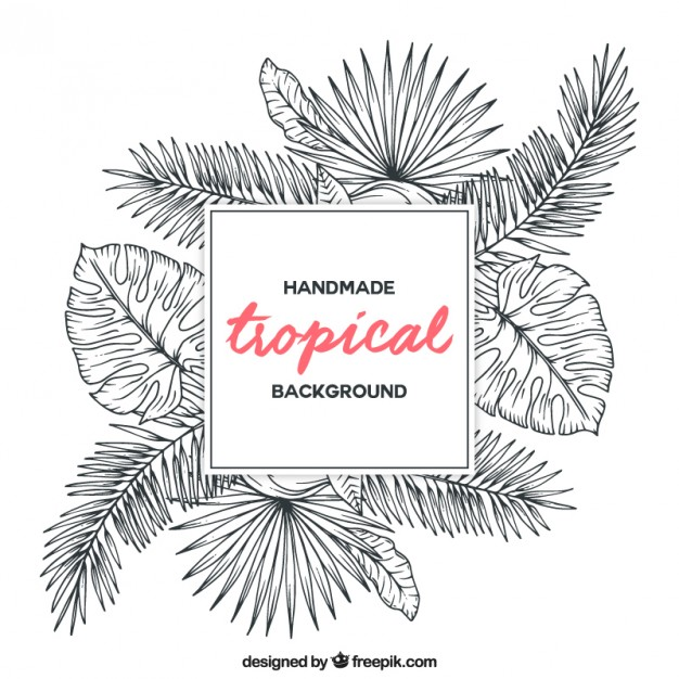 626x626 Sketches Tropical Plants Background Vector Free Download