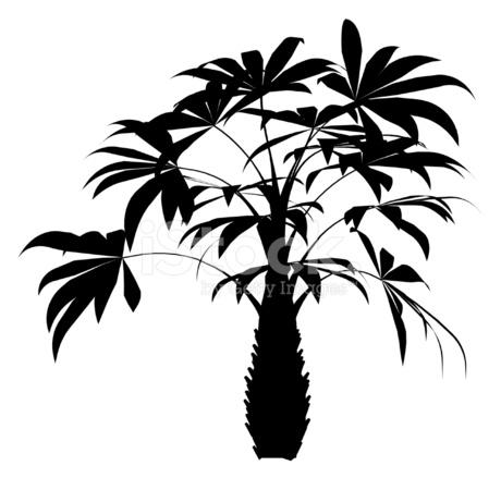 460x439 Tropical Plant Vector Stock Vector