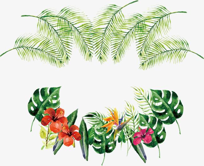 650x528 Watercolor Tropical Bottle Border, Vector Png, Tropical Plants