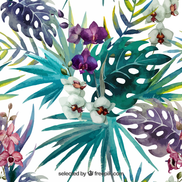 626x626 Hand Painted Tropical Plants Vector Free Download