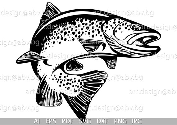 Trout Vector at GetDrawings com | Free for personal use