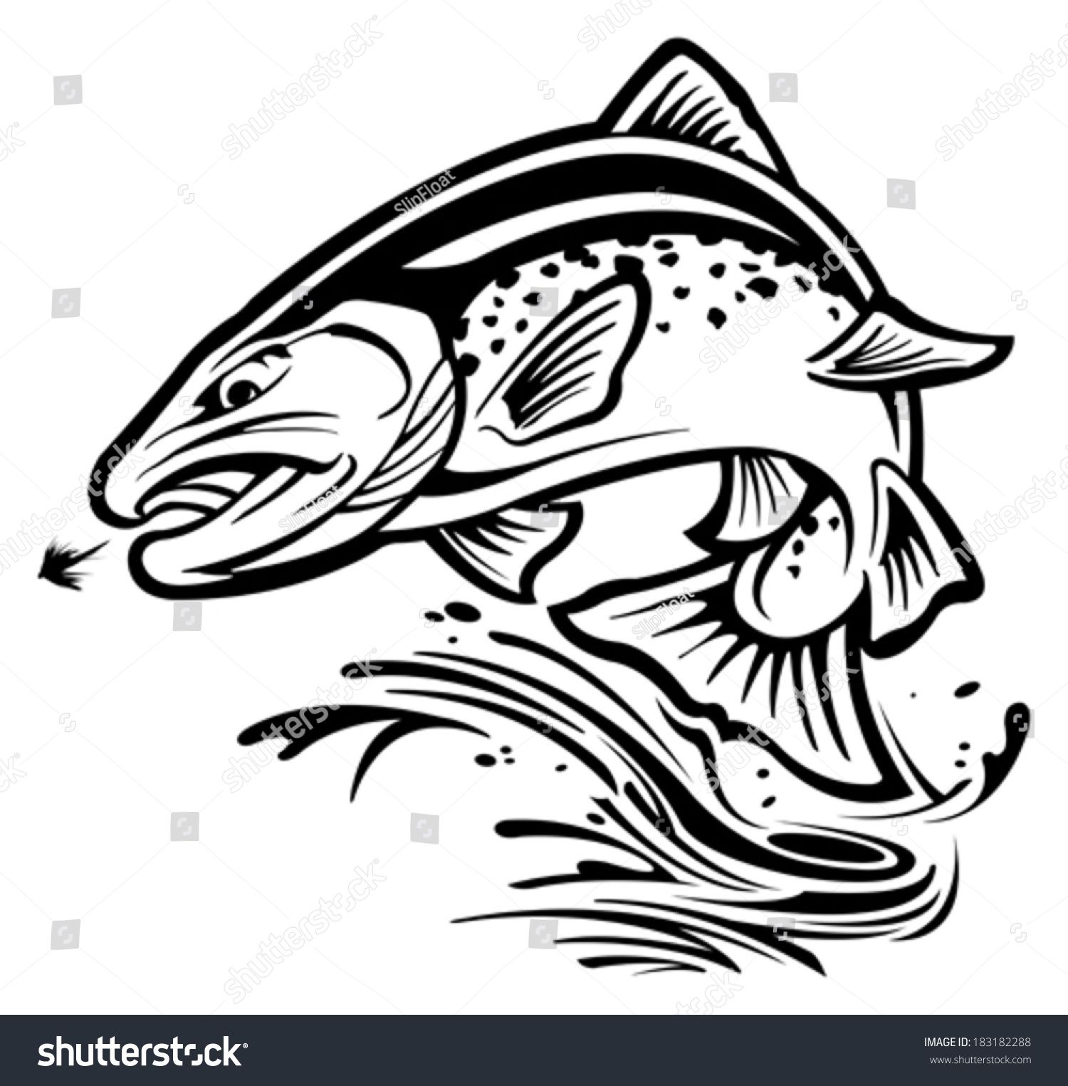 1500x1525 Trout Line Drawing Trout Stock Vector 183182288 Shutterstock