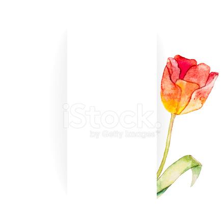 440x440 Hermosa Bandera Para Texto Con Flores Stock Vector