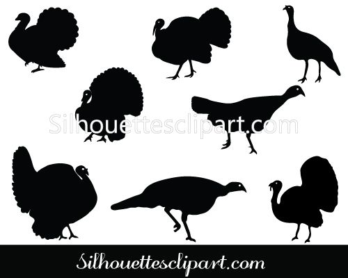 500x400 Turkey Silhouette Vector Pack Birds Vector Graphics