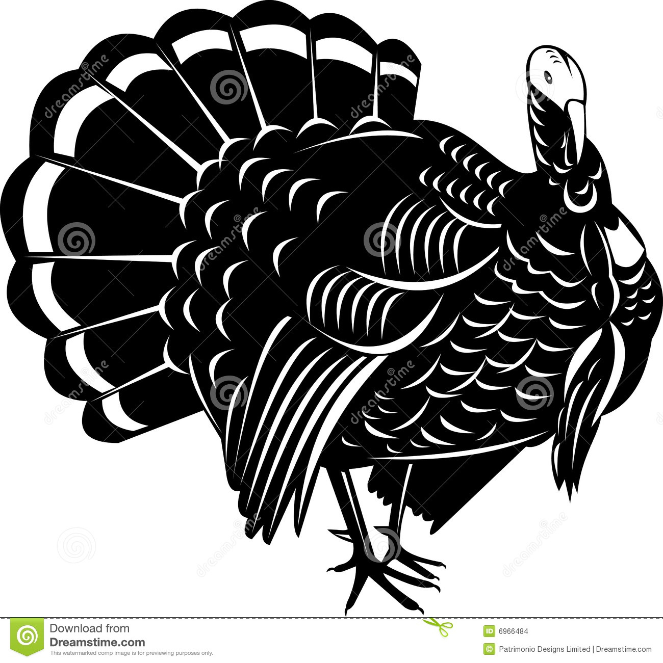 1300x1301 Turkey Vector