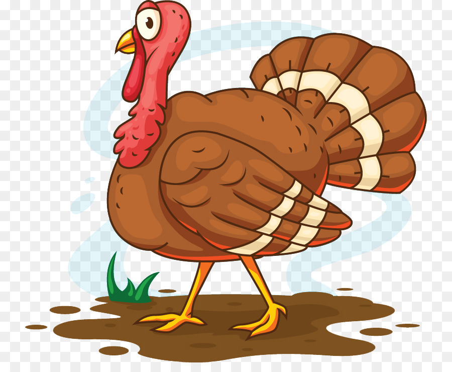 900x740 Turkey Meat Cartoon Illustration