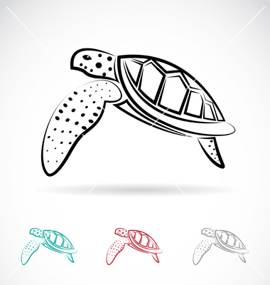 380x400 16 Turtle Vector Graphics Images