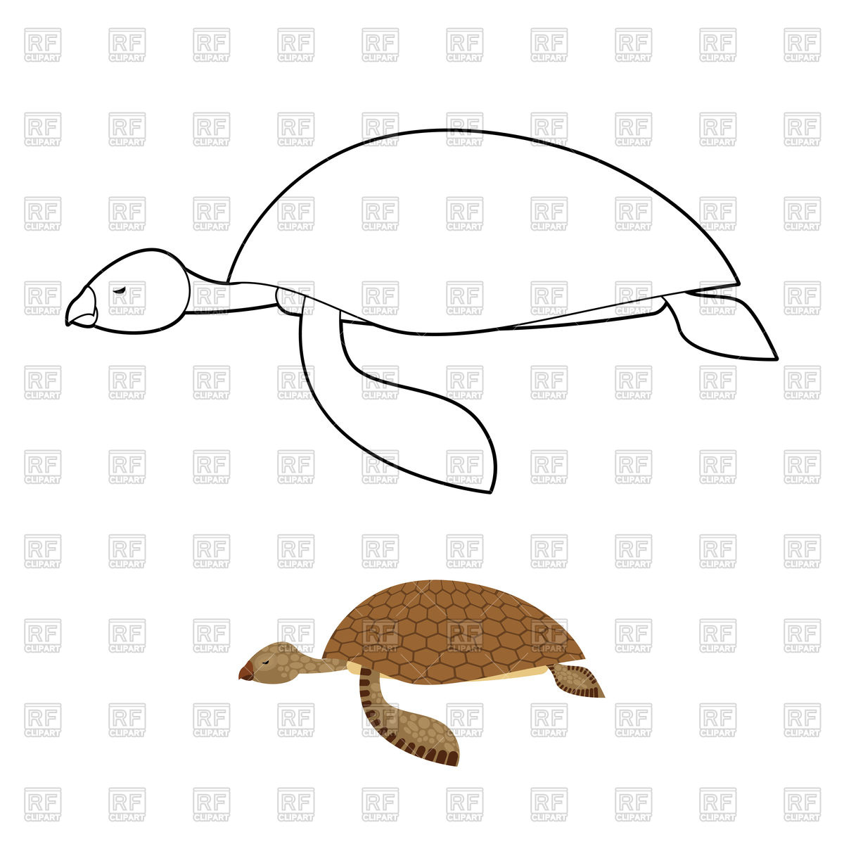 1200x1200 Water Turtle Coloring Book