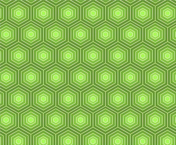 600x494 Bold Green Hexagon Turtle Pattern