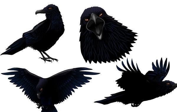 600x380 Dark Twitter Bird
