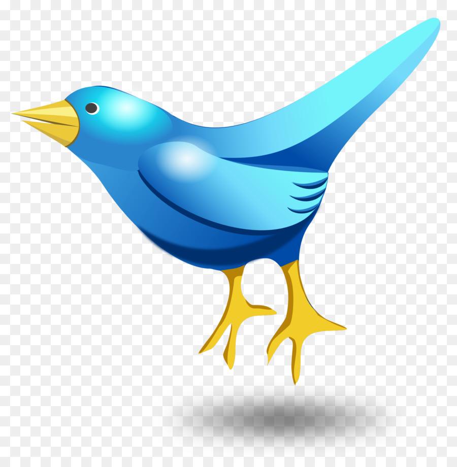 900x920 Bird Clip Art