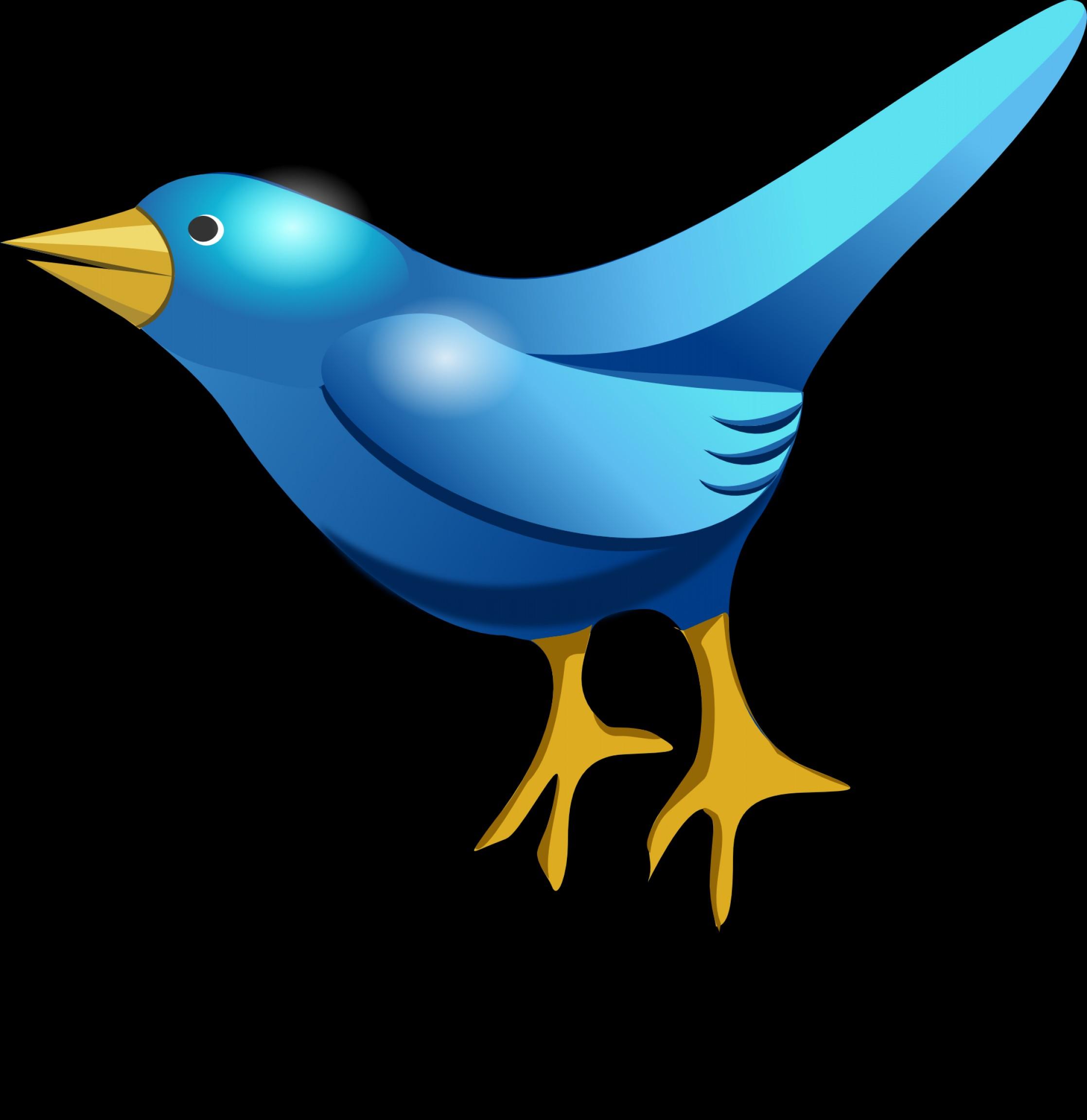 2236x2304 White Twitter Bird Logo Vector No Background Lazttweet