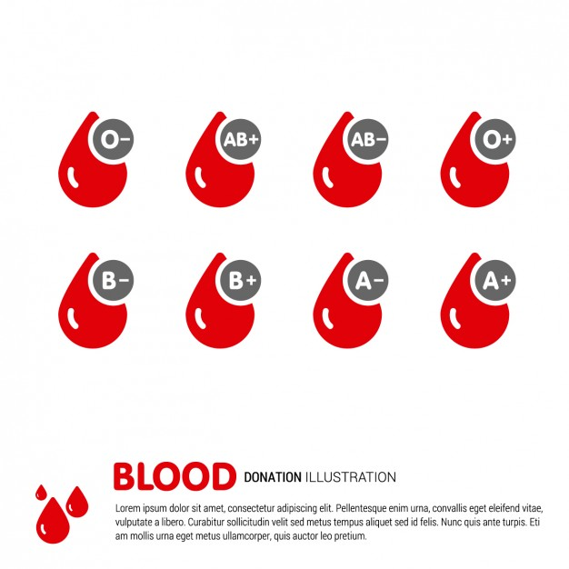 626x626 Blood Type Vectors, Photos And Psd Files Free Download