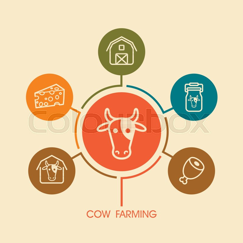 800x800 Cow Farming Icon And Agriculture Infographics. Farm Sign. Graph